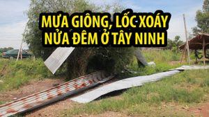 Mưa giông lốc xoáy kinh hoàng lúc nửa đêm ở Tây Ninh