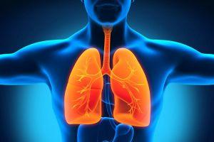 10 thực phẩm ngăn ngừa nguy cơ ung thư phổi