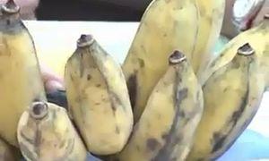 Những công dụng của quả chuối sứ