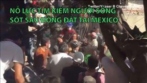 Nỗ lực tìm kiếm người sống sót sau động đất tại Mexico