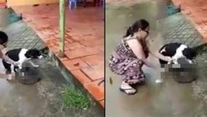 Bà chủ chặt sống chân chó: Rơi lệ trước khi xuống dao