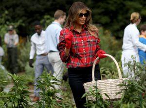 Đệ nhất phu nhân Mỹ hái rau ở Nhà Trắng vào top ảnh tuần
