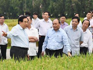 'Hội nghị Diên Hồng' bàn quyết sách cho Đồng bằng sông Cửu Long