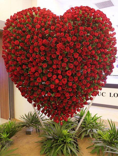 Trai tim hoa hong cao 2,5 met mung le tinh nhan o Sai Gon - Anh 1