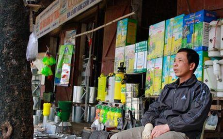 Nong dan Thai Nguyen: Nam nay se tieu thu 56.000 tan phan bon Lam Thao - Anh 1