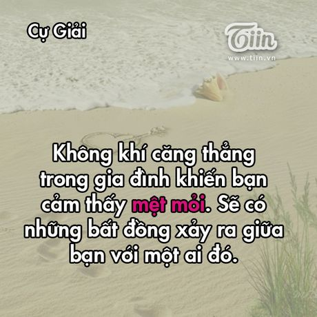 Thu tu cua ban (11/3): Co phai Song Tu dang ap u mot ke hoach kinh doanh? - Anh 4