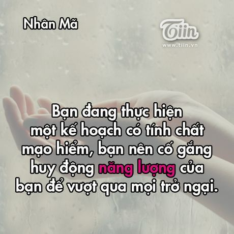 Thu tu cua ban (11/3): Co phai Song Tu dang ap u mot ke hoach kinh doanh? - Anh 9