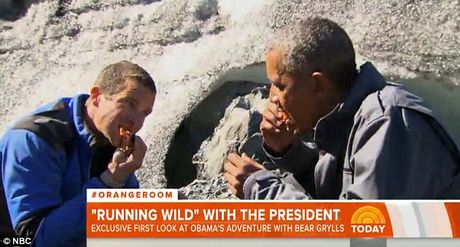 Obama an ngon lanh thuc an thua cua gau - Anh 1