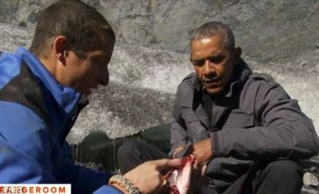 Obama an ngon lanh thuc an thua cua gau - Anh 3