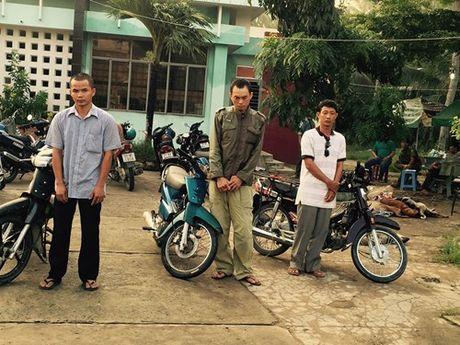 Bat qua tang 3 doi tuong van chuyen 27 con cho bi bat trom - Anh 1