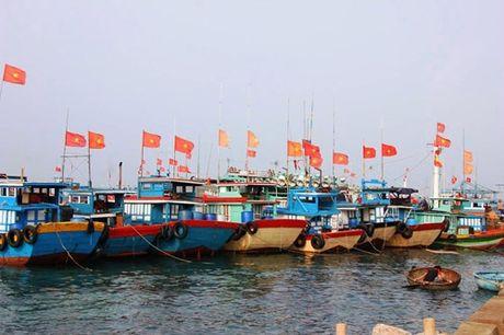 18 ty dong cho Chuong trinh ung pho voi bien doi khi hau - Anh 1