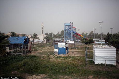 Rung minh canh dong vat chet kho, bi bo roi o Gaza - Anh 7