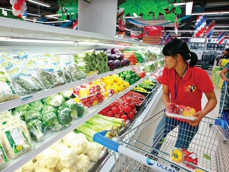 Lam phat nam 2016 du bao o muc 2,5% - Anh 1