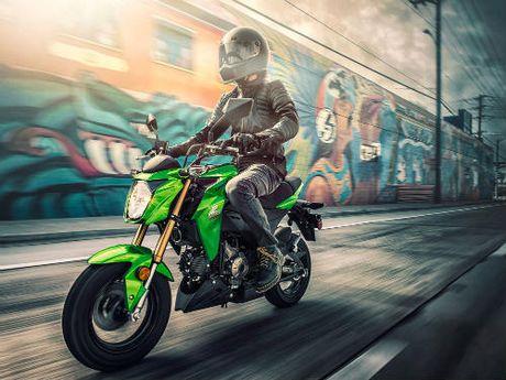 Kawasaki Z125 Pro: doi thu xung tam cua Honda Grom - Anh 1