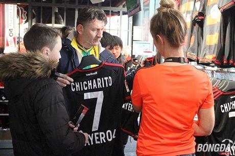 Toi di xem Chicharito va Leverkusen da bong - Anh 2