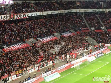 Toi di xem Chicharito va Leverkusen da bong - Anh 3