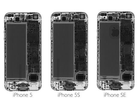 Ben trong iPhone SE: man hinh, loa, bo rung doi duoc voi 5s, co ron chong nuoc, 6/10 diem iFixit - Anh 1