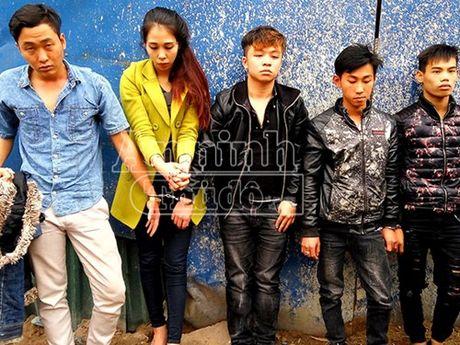 """Ru nhau tu Hai Phong len Ha Noi """"bay"""" voi 200 vien thuoc lac - Anh 2"""