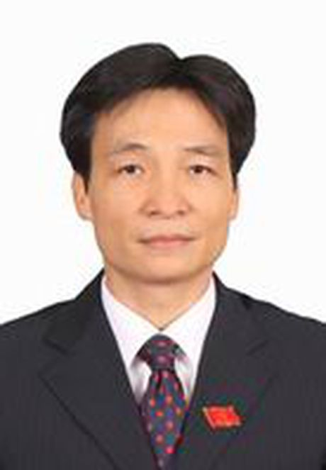 Phan cong cong tac cua Thu tuong va cac Pho Thu tuong Chinh phu - Anh 6