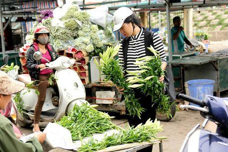 Hoa loa ken trang tinh khoi mang thang Tu ve pho - Anh 12