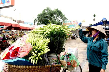 Hoa loa ken trang tinh khoi mang thang Tu ve pho - Anh 4
