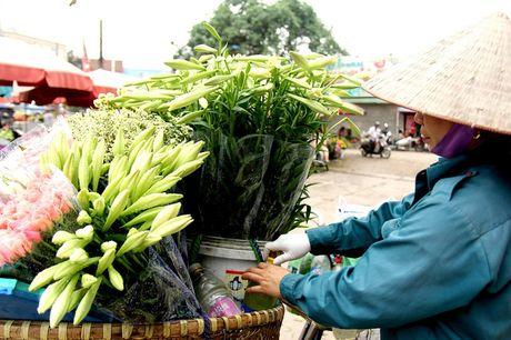 Hoa loa ken trang tinh khoi mang thang Tu ve pho - Anh 5
