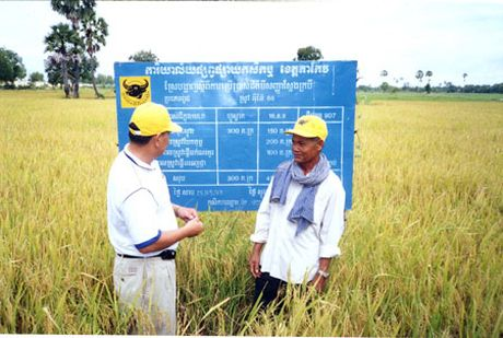 Phan bon 'Made in Vietnam' chinh phuc thi truong Campuchia - Anh 2