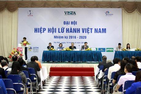 Hiep hoi Lu hanh Viet Nam to chuc tong ket cong tac nhiem ky 2010-2015 - Anh 1
