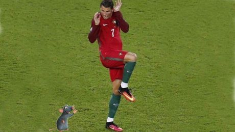 Thi dau kem coi, Ronaldo bi ghep anh treu choc - Anh 7