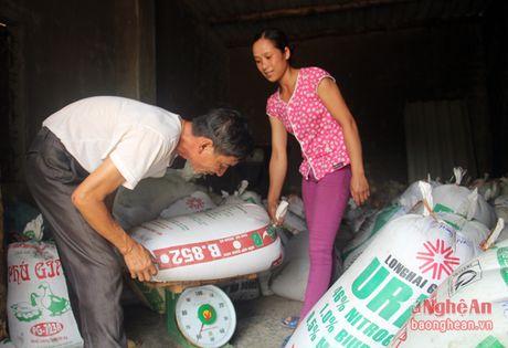 'Vang trang' tren vung dat can Nghi Van - Anh 8