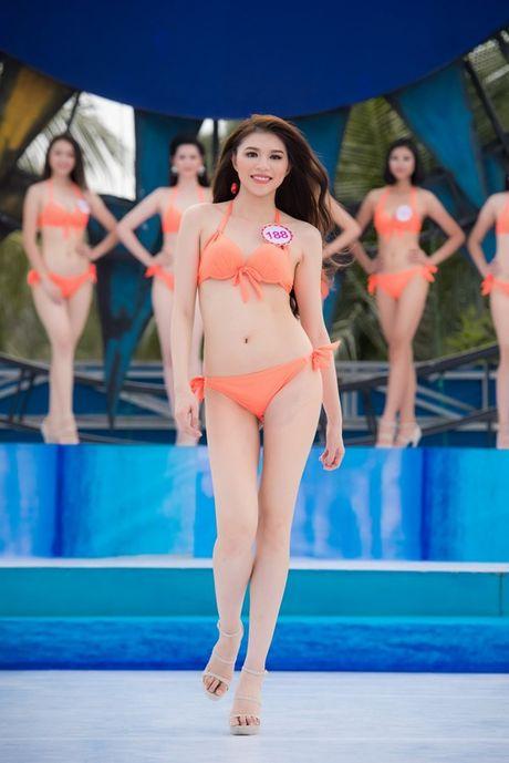 Net 'Tay' kho roi mat cua nu du hoc sinh thi Hoa hau VN - Anh 1