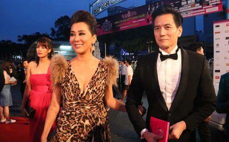 Dan sao Viet khoe sac tren tham do chung ket HHVN 2016 - Anh 10