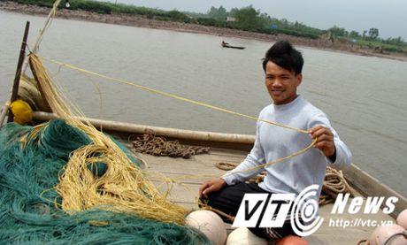 Chuyen ly ky ve nhung con ca tien ty o cua bien Thai Binh - Anh 2