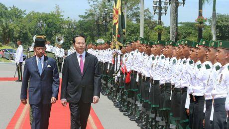 Viet Nam - Brunei nhat tri mo rong quan he hop tac - Anh 1