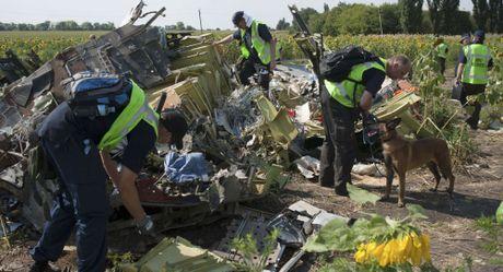 Xac dinh danh tinh cac nghi pham vu MH17 vao cuoi nam nay? - Anh 1