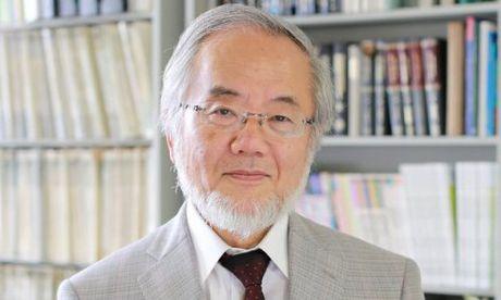 Nobel Y hoc 2016 thuoc ve nha khoa hoc Nhat Ban - Anh 1