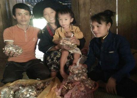 Vi sao luong y Phan Thi Dien ngay cang noi tieng? - Anh 1