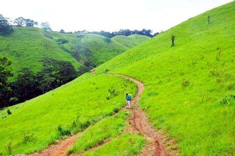 Cung duong trekking dep nhat Viet Nam 'hop hon' phuot thu - Anh 4