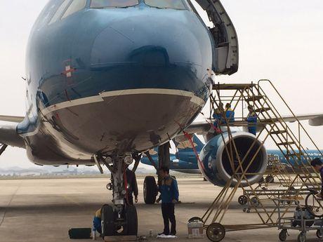 Chim troi lam hong hai tau bay hien dai nhat cua Vietnam Airlines - Anh 1