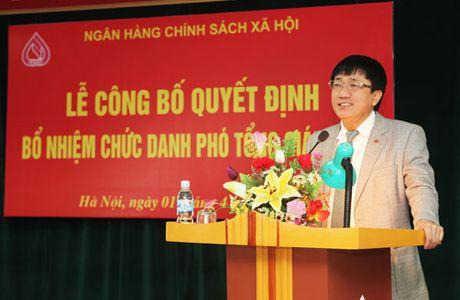 Bo nhiem Tong Giam doc Ngan hang Chinh sach Xa hoi - Anh 1
