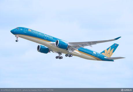 Vietnam Airlines hoan hang loat chuyen bay do chim va vao dong co - Anh 1