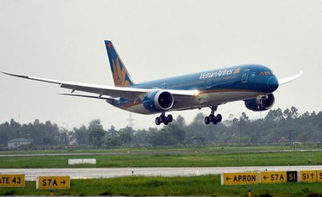 Va phai chim, may bay Boeing cua Vietnam Airlines hong dong co - Anh 1