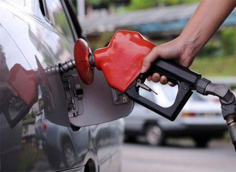 Petronas bac tin rut khoi du an ti USD o Canada - Anh 1