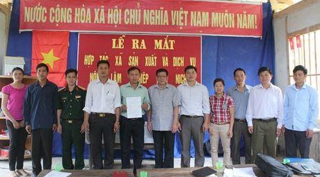 Vi Xuyen (Ha Giang): Ra mat HTX san xuat va dich vu nong, lam nghiep Nam Nich - Anh 1