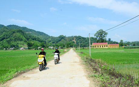 Tuyen Quang: Ho tro xay dung ha tang nong thon - Anh 1