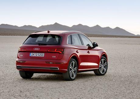 Me man mau xe sang Audi Q5 crossover SUV moi duoc nang cap - Anh 9