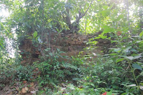 Hoang tan di tich Cham Pa o Hue - Anh 1