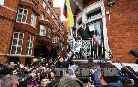 Wikileaks sap cong bo 1 trieu tai lieu mat - Anh 1