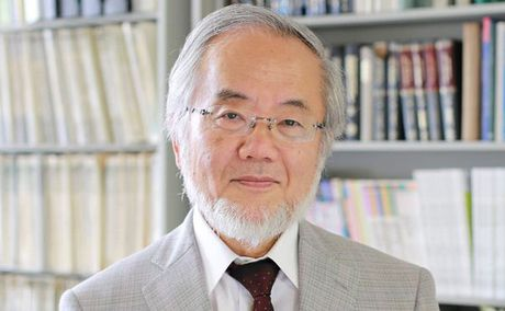 Giai Nobel Y hoc 2016 thuoc ve nha khoa hoc nguoi Nhat Ban - Anh 1