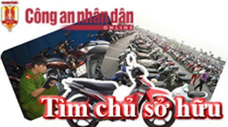 Tim chu so huu xe may - Anh 1